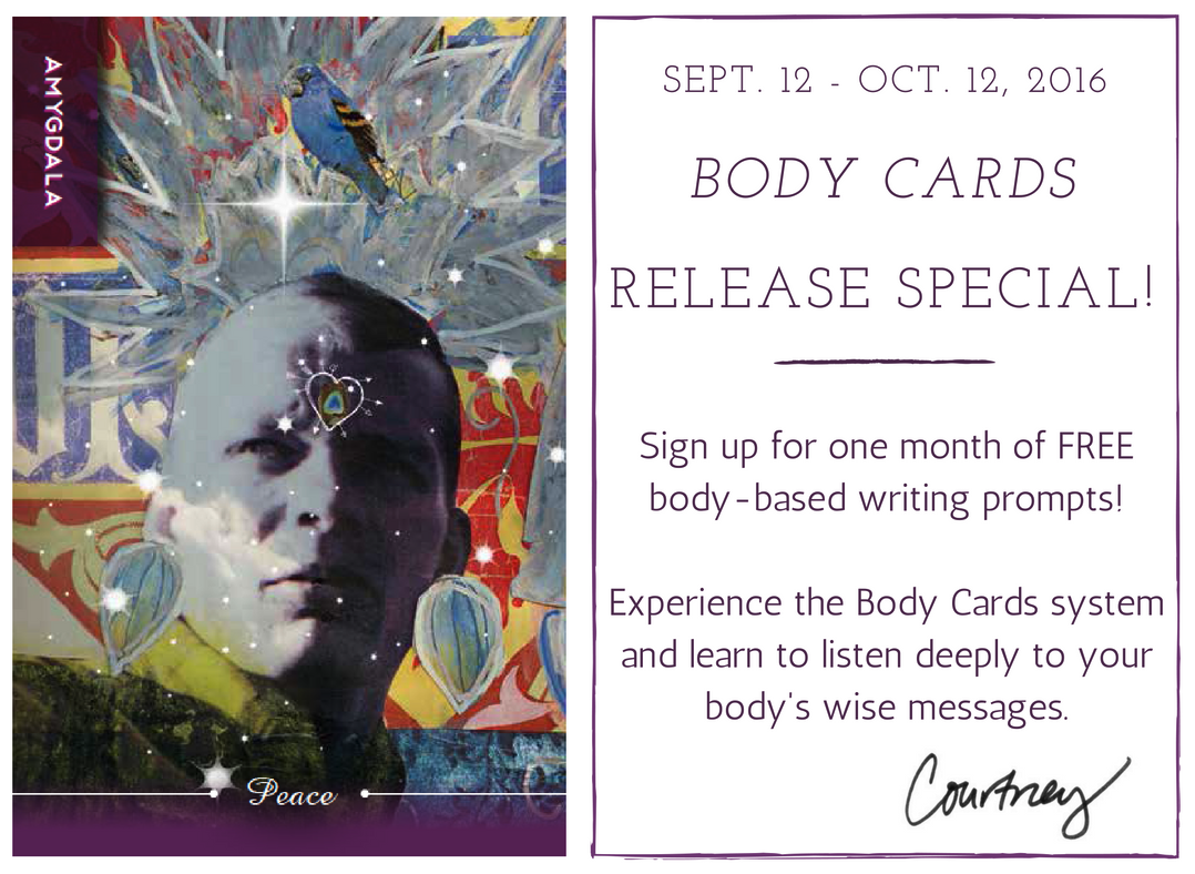 Body Cards Release special!