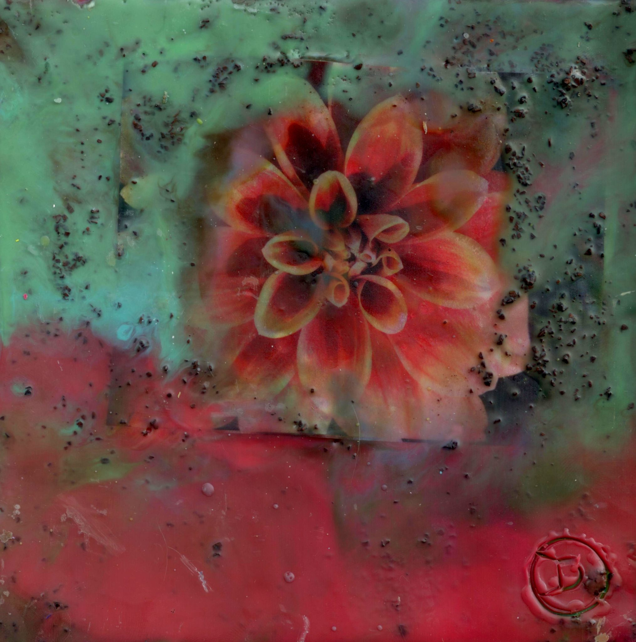 Divining Dahlia, mixed media encaustic by Courtney Putnam